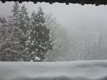 なごり雪…と言うには激しすぎる